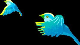 Birds right