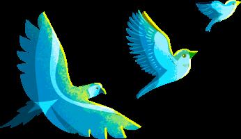 birds left